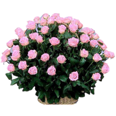 Корзина из живых цветов КЖ-26