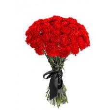 Цветы Гвоздики Красные