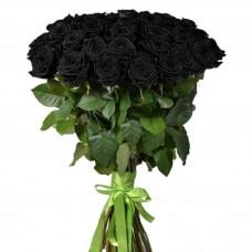 Цветы Розы Черные