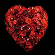 Венок в виде сердца из живых цветов ВСЖ-11